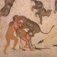 Leopards Attacking a Criminal
